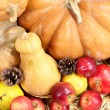 Autumn composition of fruits and pumpkins on straw close-up — Stock Photo