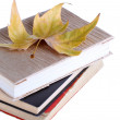 Books and autumn leaf isolated on white — Stock Photo