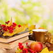 Books and autumn leaves on wooden table on natural background — Stock Photo