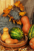 Pumpkins and watermelons in wooden tub with wicker stand on straw on sackcloth background — Stock Photo