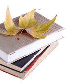 Knihy a podzimní listí izolovaných na bílém — Stock fotografie