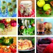 Christmas collage with tasty food, drinks and decorations — Stock Photo