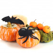 Halloween composition, isolated on white — Stock Photo