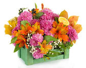 Flowers composition in crate isolated on white — Stock Photo