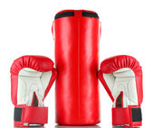 Boxing gloves and punching bag, isolated on white — Foto Stock
