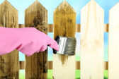 Applying protective varnish to wooden fence, on bright background — Stok fotoğraf