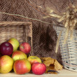 Ripe apples in basket on shelf on brown background — Stock Photo