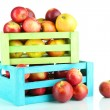Juicy apples in wooden boxes isolated on white — Stock Photo