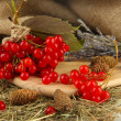 Red berries of viburnum on stand with hay and bumps on table on sackcloth background — Foto Stock #37031487