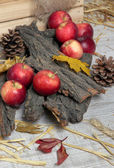 Apples with bark and bumps on wooden background — Photo
