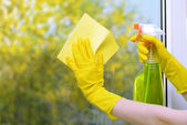 Hands with spray cleaning the window — Stock Photo