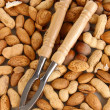 Nutcracker with nuts close-up background — Stock Photo