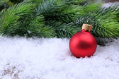 Christmas ball and fir tree on light background — Stock Photo