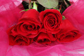 Beautiful red roses on pink fabric close-up — Stock Photo