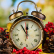 Old clock on autumn leaves on wooden table on natural background — Stock Photo #37106031