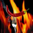 Red hot chili pepper  on fork, on fire background — Stock Photo