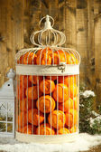Tangerines in decorative cage, on wooden background — Stock Photo