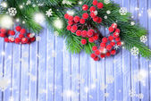 Christmas fir tree and red berries on wooden background — Stock Photo