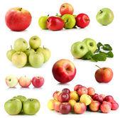 Apples isolated on white — Stockfoto