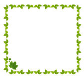 Frame of green leaves isolated on white — Stock Photo