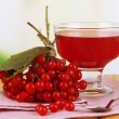 Red berries of viburnum and bowl with jam on table on bright background — Stock Photo