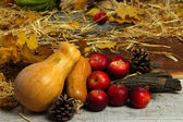 Pumpkins and apples with bark on wooden background — Stock Photo