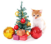 Little kitten with Christmas decorations isolated on white — Photo
