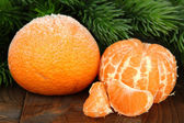 Ripe frosted tangerines with fir branch on wooden background — Stock Photo