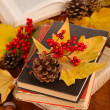 Books and autumn leaves on wooden table close-up — Stock Photo #37361185