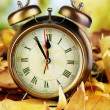 Old clock on autumn leaves on wooden table on natural background — Zdjęcie stockowe #37361515