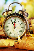 Old clock on autumn leaves on wooden table on natural background — Foto Stock