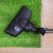 Stock Photo: Vacuuming carpet in house