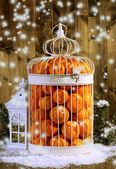 Tangerines in decorative cage, on wooden background — Photo