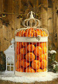 Tangerines in decorative cage, on wooden background — Stock fotografie