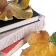 Books and autumn leaves isolated on white — Stock Photo