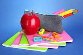 Pencil box with school equipment on blue background — Stock Photo