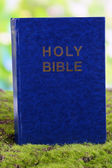 Bible on grass on natural background — Stock Photo