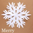 Beautiful paper snowflake on brown background — Stock Photo #37556925