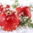 Red apples with fir branches in snow close up — Stock Photo #37599121