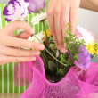 Florist makes flowers bouquet — Stock Photo #37615409