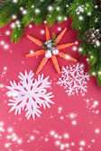 Beautiful snowflakes with fir branch on pink background — Stock Photo