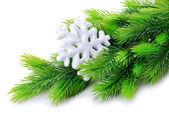 Weihnachten schneeflocken auf tanne, isoliert auf weiss — Stockfoto