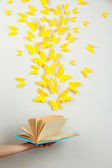 Paper yellow butterflies fly out of book — Stock Photo