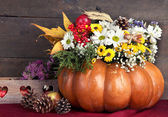 Beautiful autumn composition in pumpkin with bumps and decorative box on table on wooden background — Photo