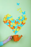 Paper butterflies fly out of watering can on green wall background — Stock Photo