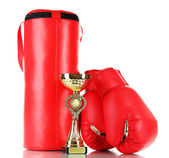 Boxing gloves and punching bag, isolated on white — ストック写真