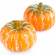 Two pumpkins isolated on white — Stock Photo