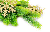 Christmas decorative snowflakes on fir tree, isolated on white — Stock Photo