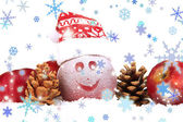 Holiday äpple med frostat rita i snön isolerade på vit — Stockfoto