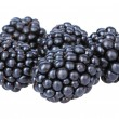 Stock Photo: Sweet blackberries isolate on white